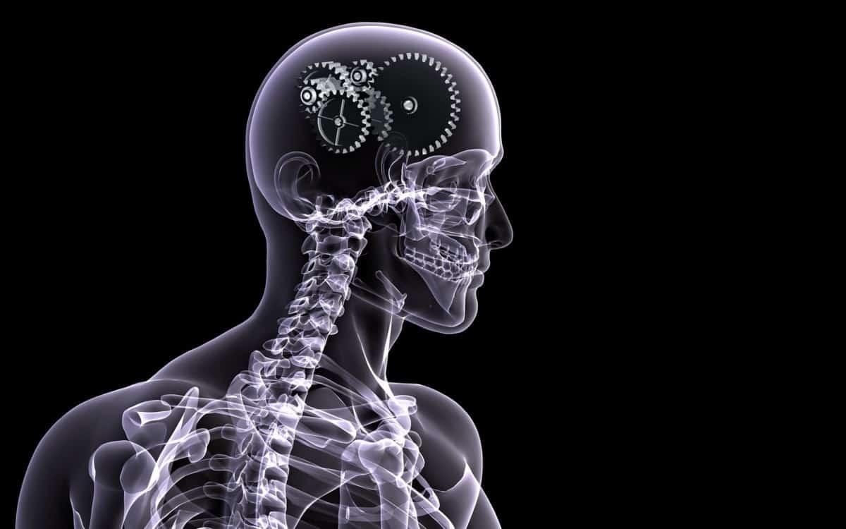 Are X-Rays Necessary?